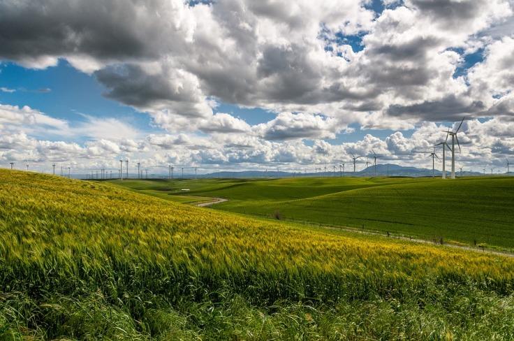 quiz - wind-farm-1209784_960_720